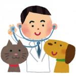 オス犬の去勢手術はやるべき?【とある獣医師の経験談】