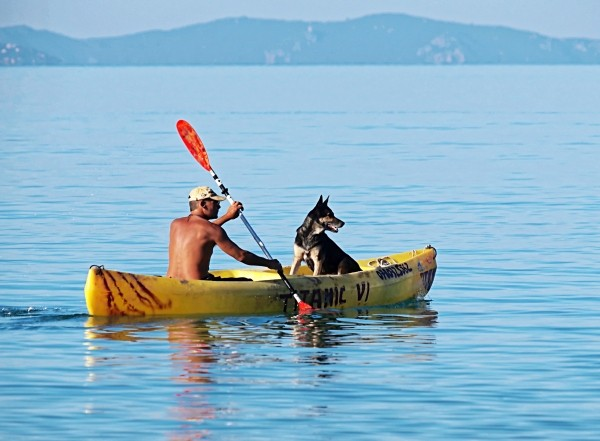 man-and-dog-in-canoe