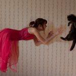 猫・避妊手術の後に発情?せっかく手術を受けたのに・・・これって手術の失敗?
