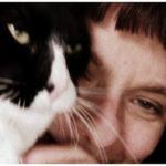 適齢期を逃してしまったメス猫に避妊手術を行った時の5つのリスク。