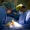縫合糸のアレルギー?肉芽腫??犬の避妊手術後の縫合糸にまつわるあれこれ。